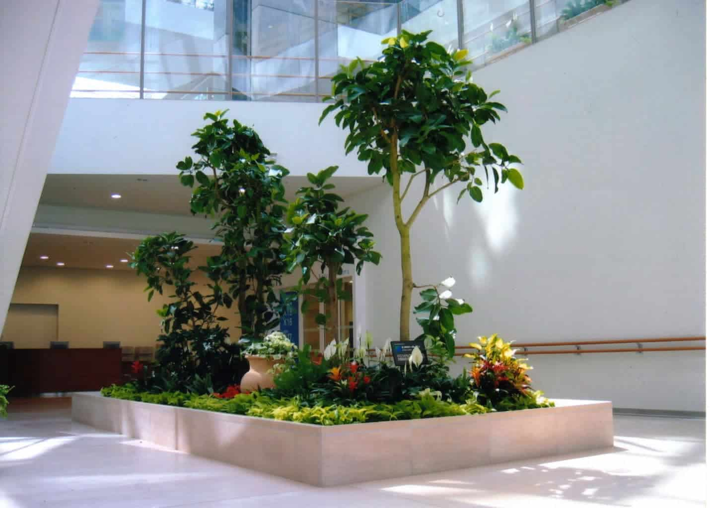 Portfolio of interior plants and indoor landscapes in nh for Manapat interior landscape designs