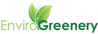 EnviroGreenery Plants: MA and NH Interior Office Plant Maintenance Company