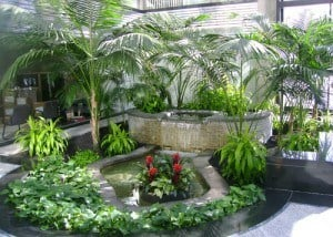 large atrium with many plants in beverly massachusetts