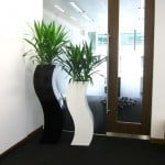 exotic looking planters in a modern office in burlington ma