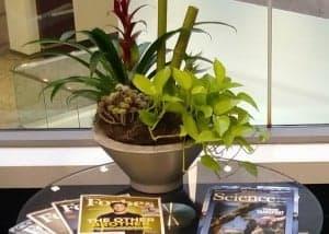 floral display in framingham office building