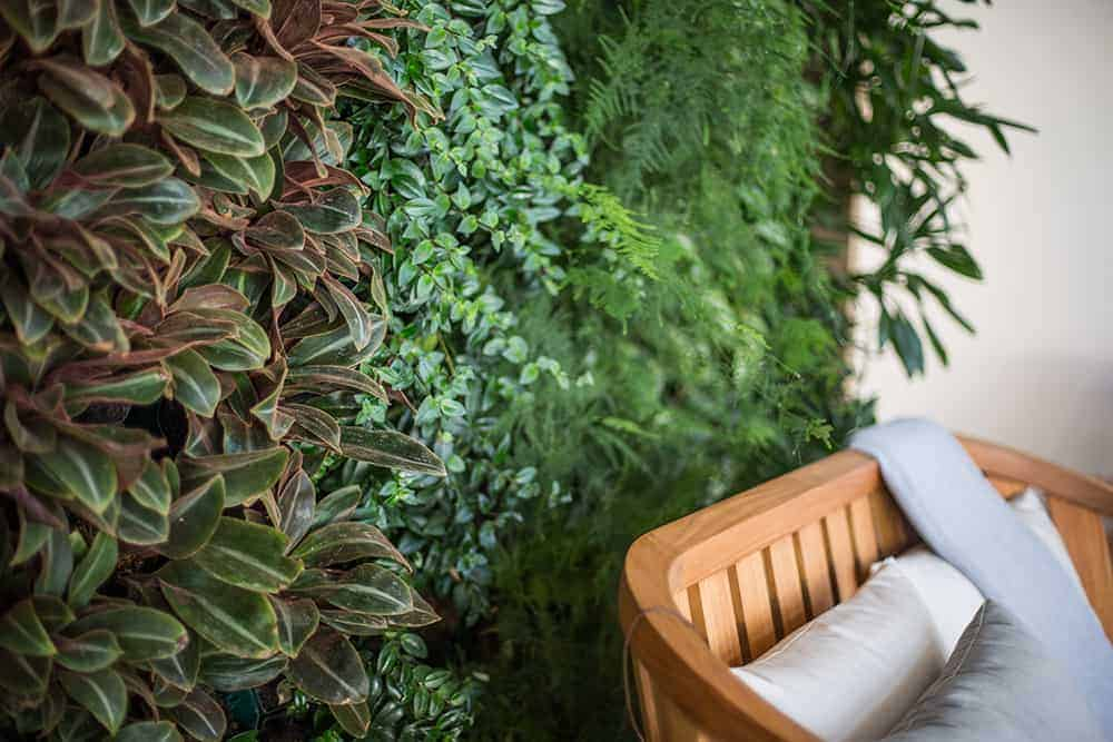 green plant wall behind bench in wellesley office builidng