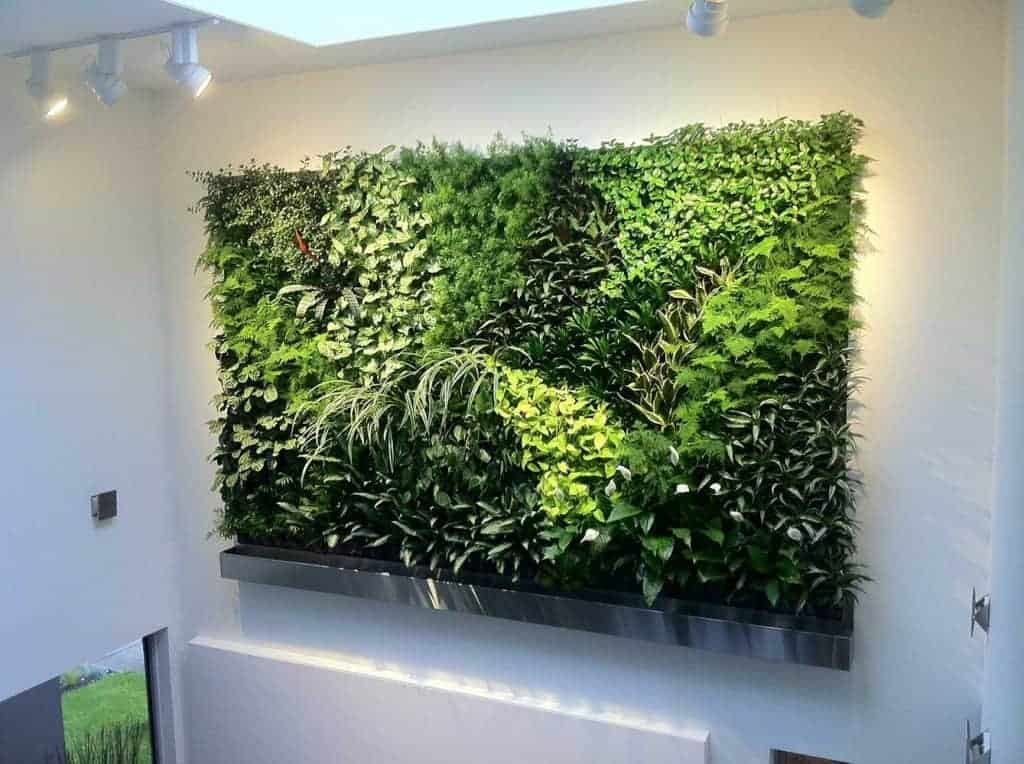 green plant wall in waltham ma