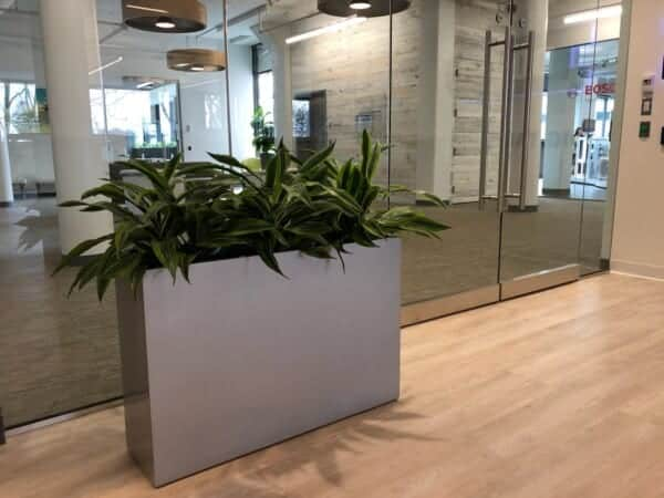 Rectangle Floor Planter in Wellesley Massachusetts