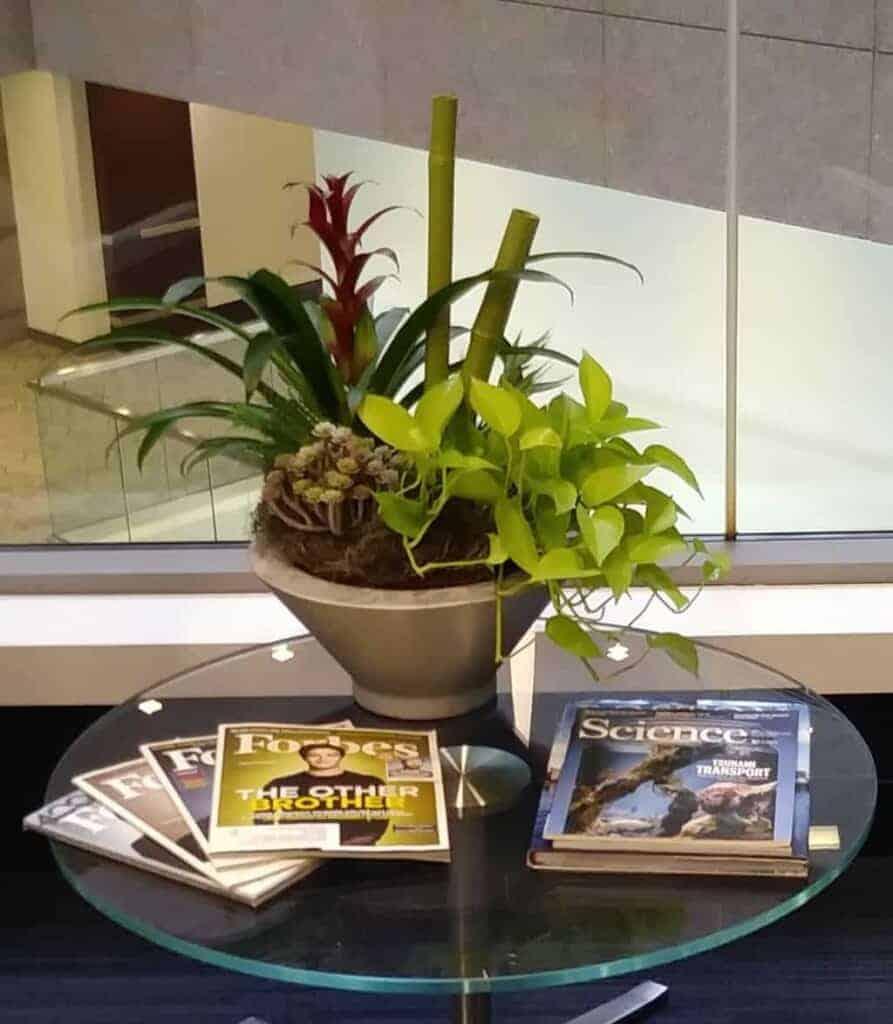 a flower bowl in a lobby in framingham massachusetts