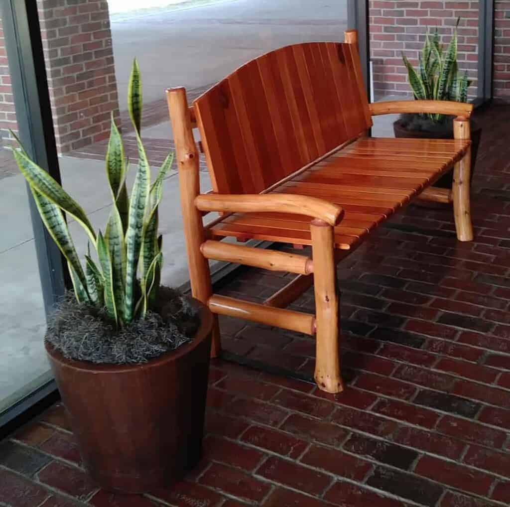 bench with plants