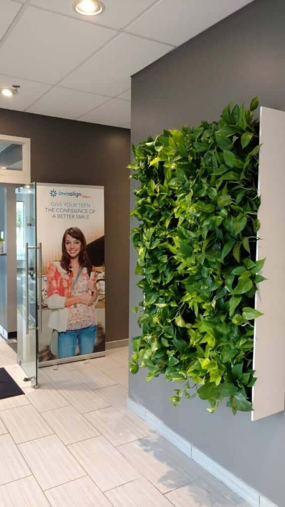 EnviroGreenery - Living Plant Wall with Pothos in Burlington ma