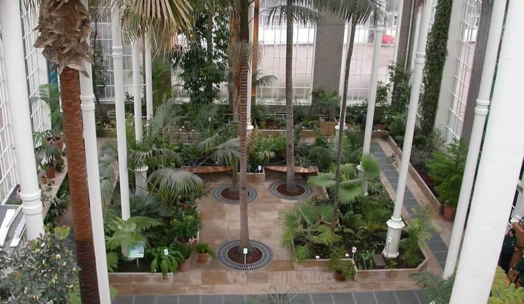 Royal Botanic Garden Edinburgh - Palm house