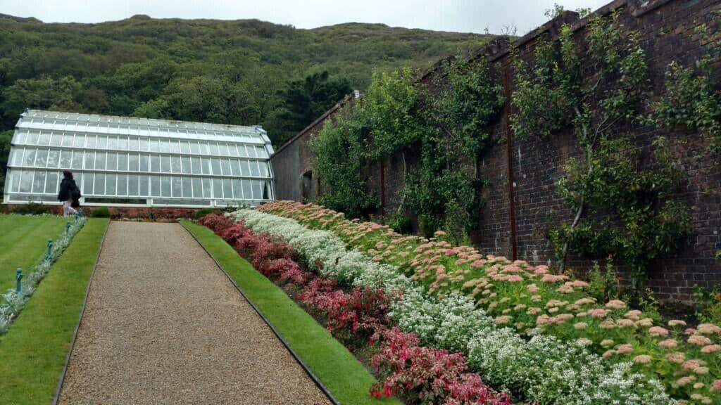 exterior flower plants